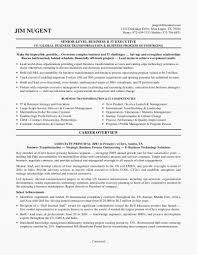 Austin Resume Service Lovely It Executive Resume Samples Wp