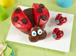 Funny Birthday Cake Ideas For Husband Fun Parenting Ladybug And