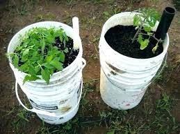 self watering containers container gardening pots diy pot reservoir