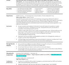 Sample Functional Resume Executive Skills