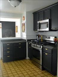 what type of paint for kitchen cabinetsKitchen  Different Color Kitchen Cabinets Dark Gray Kitchen