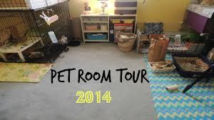 My Pet Room Tour 2014