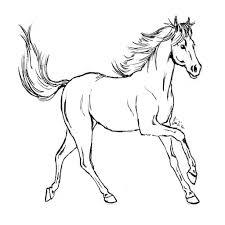 Immagini Di Cavalli Da Colorare Con Disegni Cavalli Facili