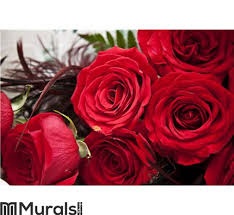 red roses wall mural wall art wall decor