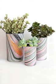 Succulents in Tin Can Planters DIY