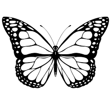 There is no reason to ever be bored with so many fun butterfly projects to work on! Free Printable Butterfly Coloring Pages For Kids