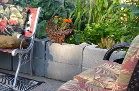 are cinder blocks ok for vegetable