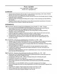Resume Summary Statement Examples Interesting Awesome Resume Summary Statement Examples Templates For Sales