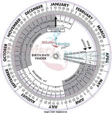 Pregnancy Due Date Chart Conception The Beginners Guide To Pregnancy Calculator