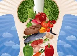 Курсовая работа Здоровый образ жизни как научная проблема  Правильное питание как фактор здорового образа жизни режим питания