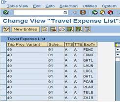 Hcm Travel Management Restricting Travel Expenses Sap Blogs