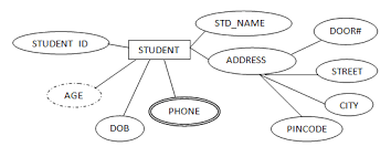 er data model   er diagram symbols   one to one relation   one to    a composite attribute is also represented by oval shape  but these attribute will be connected to its parent attribute forming a tree structure
