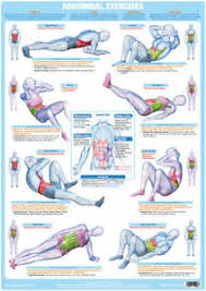 Details About Abdominal Exercise Poster Core Muscles Chart Stomach Muscles Six Pack