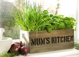 mum s kitchen herb garden windowsill planter with herbs and compost 16 99