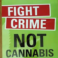 reasons why marijuana should be legalized essay reasons why marijuana should be legalized essay marijuana should not be legalized essay as it seems to ten reasons why marijuana should marijuana