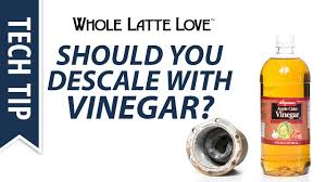 Should You Descale with Vinegar? - YouTube