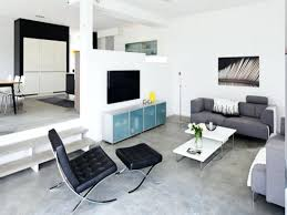 Modern Apartment Decorating Ideas Model Best Inspiration