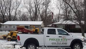 tree trimming in northwest indiana tree cutting prices11