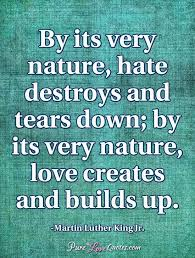 Love And Hate Quotes Enchanting Love And Hate Quotes PureLoveQuotes