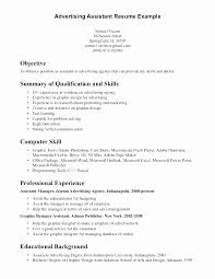 Marketing Assistant Resume Beauteous Sales And Marketing Assistant Resume Sample Fresh Marketing