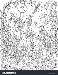 Small Picture Birds Flowers Coloring Page Birds Paradise Stock Vector 627468083