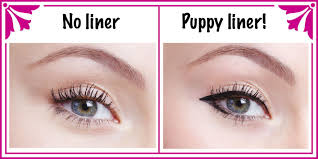 also you could try out a puppy eye s ak hdl buzzfed static 2016 07 29 10 enhanced webdr11 enhanced 32018 1406643470 1 jpg or