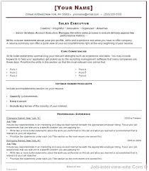 ms word professional resume template resume format in microsoft word resume format free top professional