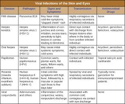 Picture of Herpes Simplex Virus Type