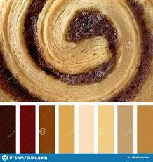 Bun Chart Cinnamon Bun Palette Stock Photo Image Of Chart Roll