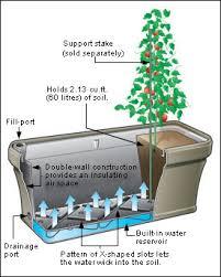 Self Watering Planter   Gardening