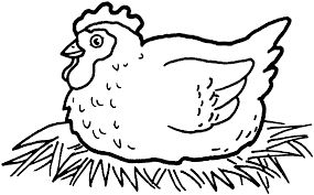Hen Coloring Page Chicken Chicken Coloring Pages Chicken