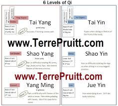 Yang Meridians Terre Pruitts Blog
