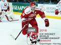 Image result for danmark ishockey tv