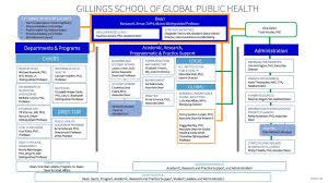 gillings leadership organizational chart