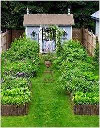 Small Picture Garden Plot Ideas Vegetable Garden Design Ideas Backyard