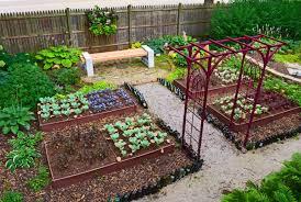 backyard gardening. Ideas For Backyard Gardens Gardening Garden Property T
