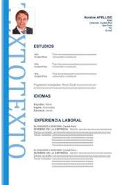 Modelo De Curriculum Vitae 2018 Peru Word Professional User Manual