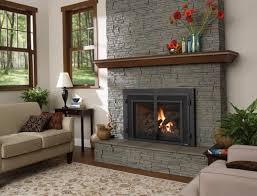 fireplace glass door hinges home design ideas
