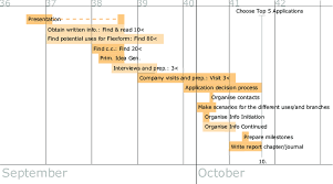 Gen Chart 1 Gantt Task Chart For The 1 St Project Phase Download