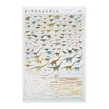 Dinosaur Chart Kinds Of Dinosaurs Prehistoric Animals