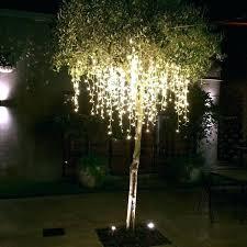 outdoor tree lighting ideas. Outdoor Tree Lights Xmas Nz Light Decoration Ideas Australia .  Lighting H