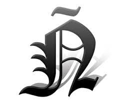 logo brand identity inspiration n diploma logo  n diploma logo