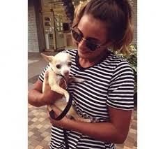 North Shore Sydney Friendly Pet Minder Walker Doggy Day Care