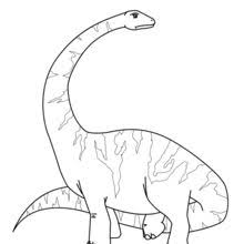 dinosaurs to color. Fine Dinosaurs Pteranodon Diplodocus Coloring Page Throughout Dinosaurs To Color