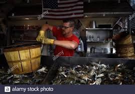 Maryland Seafood Market High Resolution ...