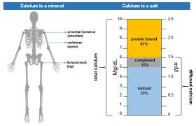 Normal Calcium Levels What Is A High Calcium Level Normal