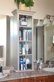 bathroom vanity storage. Masterbath Cabinet With A Door Though Bathroom Vanity Storage E