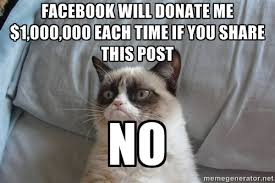 Grumpy Cat No Meme Facebook - grumpy cat no meme facebook due to ... via Relatably.com