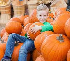 Fall Festival At The Mount   Catholic Charities of <b>StatenIsland</b>