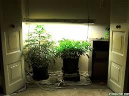 inspiring closet surprising closet grow room setup design small closet grow indoor grow closet